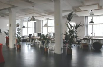 Commercial office space that is clean following pest control services from ASAP Pest Control